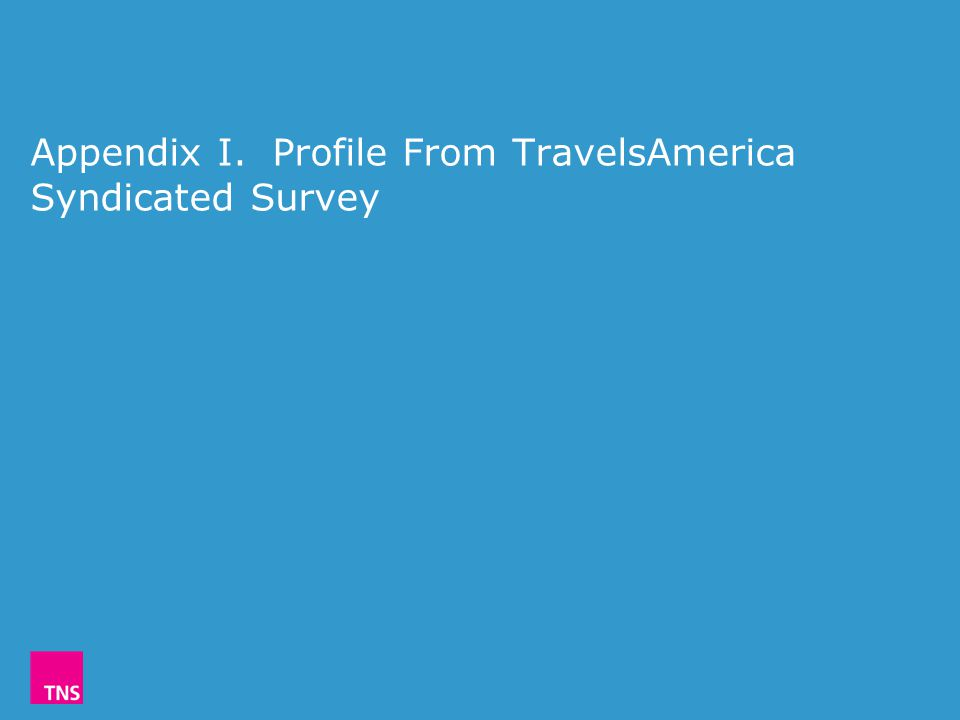 Appendix I. Profile From TravelsAmerica Syndicated Survey