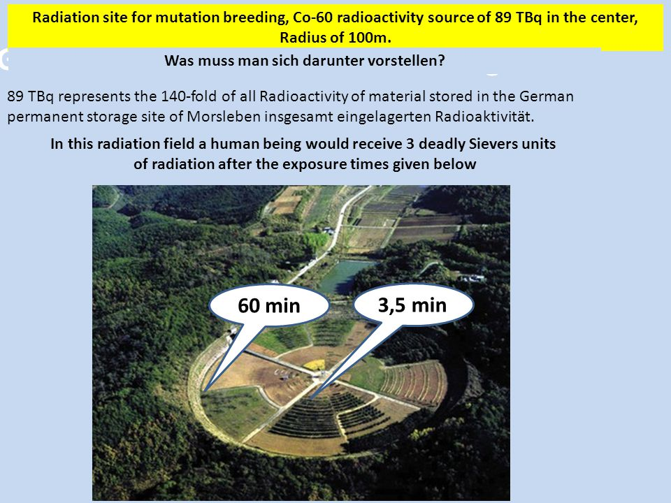 Gamma Field for Radiation Breeding Radiation site for mutation breeding, Co-60 radioactivity source of 89 TBq in the center, Radius of 100m.