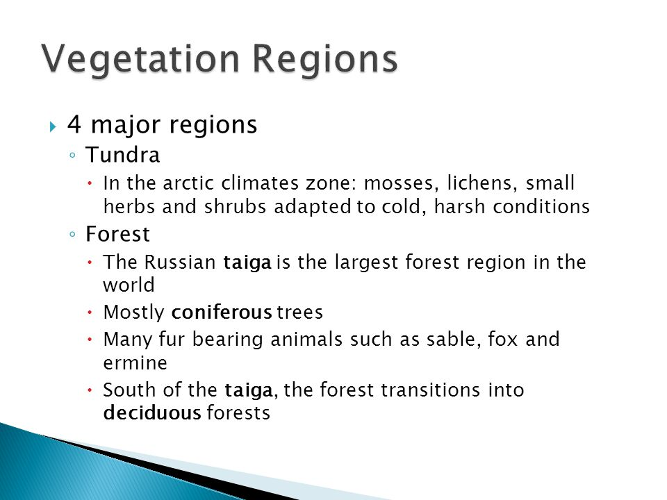 4 major regions ◦ Tundra  In the arctic climates zone: mosses, lichens, small herbs and shrubs adapted to cold, harsh conditions ◦ Forest  The Rus