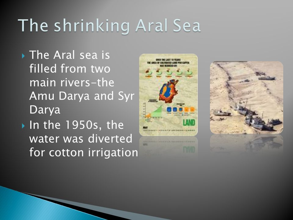  The Aral sea is filled from two main rivers-the Amu Darya and Syr Darya  In the 1950s, the water was diverted for cotton irrigation