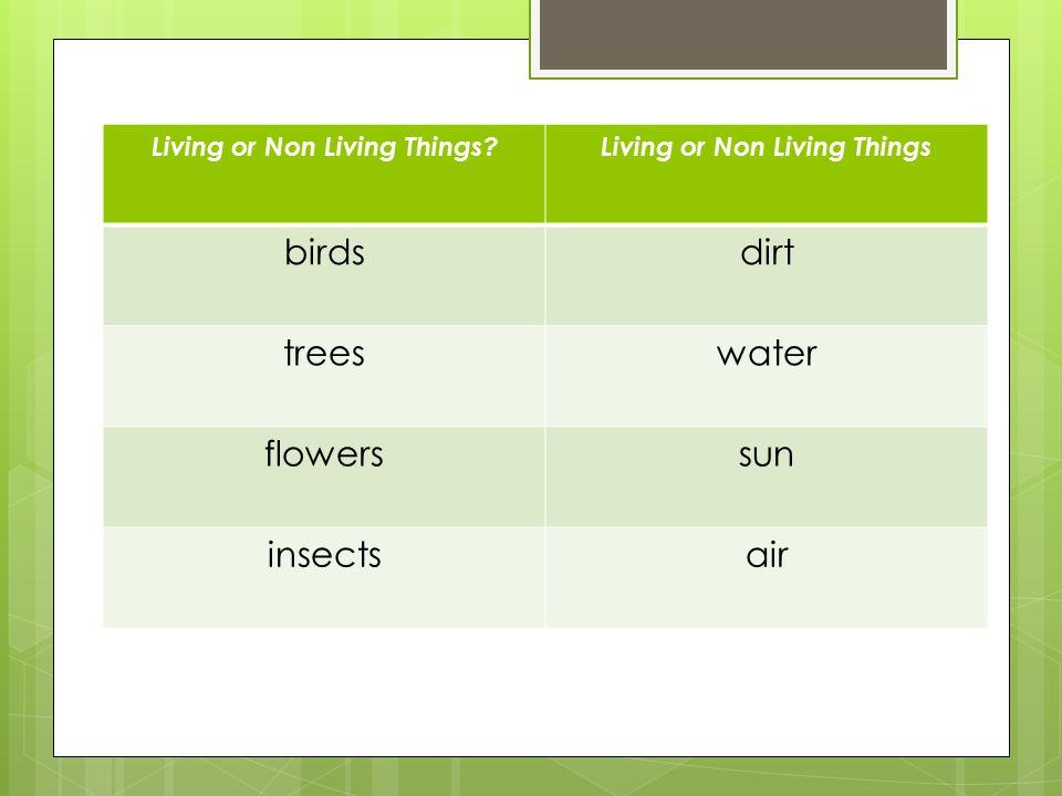 Living or Non Living Things Living or Non Living Things birdsdirt treeswater flowerssun insectsair