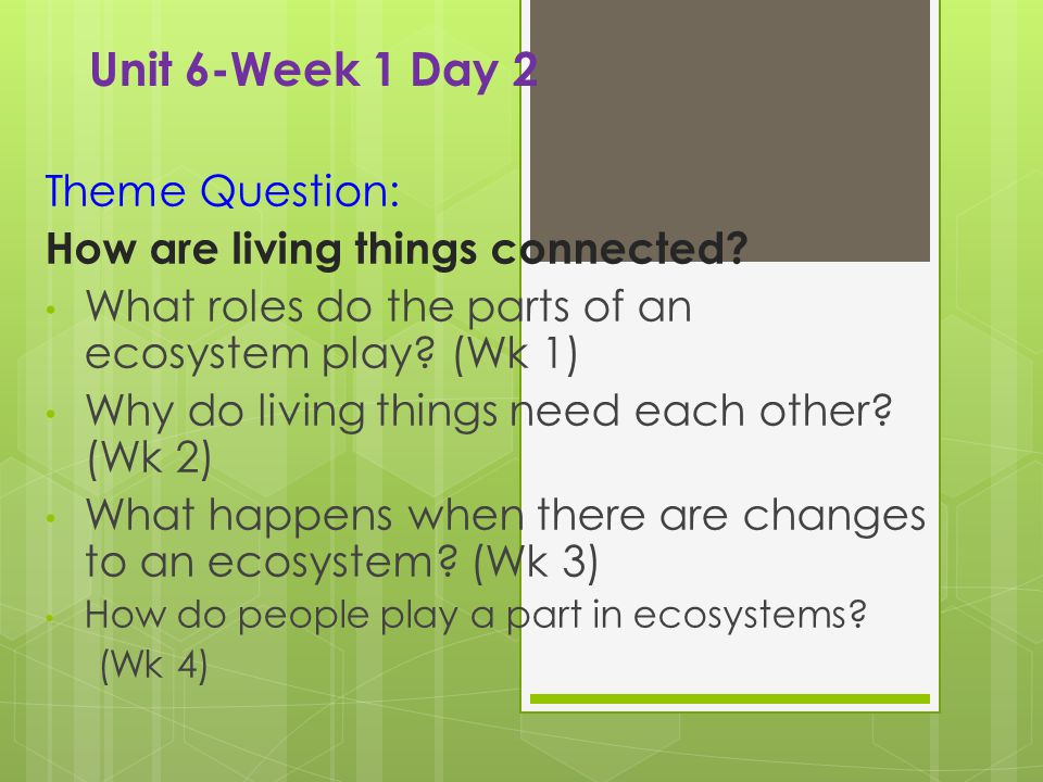 Theme Vocabulary  How do you think the living and nonliving things around us are connected.