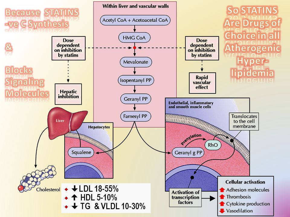 HMGCoA Reductase Because it blocks cholesterol synthetic pathway it is also blocks signaling molecules responsible for progress of inflammation, vulnerability & athrothrombosis occuring 2 ndry to excess C accumulation in periphery  Improve endothelial function   vascular inflammation  Stabilization of atherosclerotic plaque   platelet aggregability  Antithrombotic actions  Enhanced fibrinolysis …etc 2.