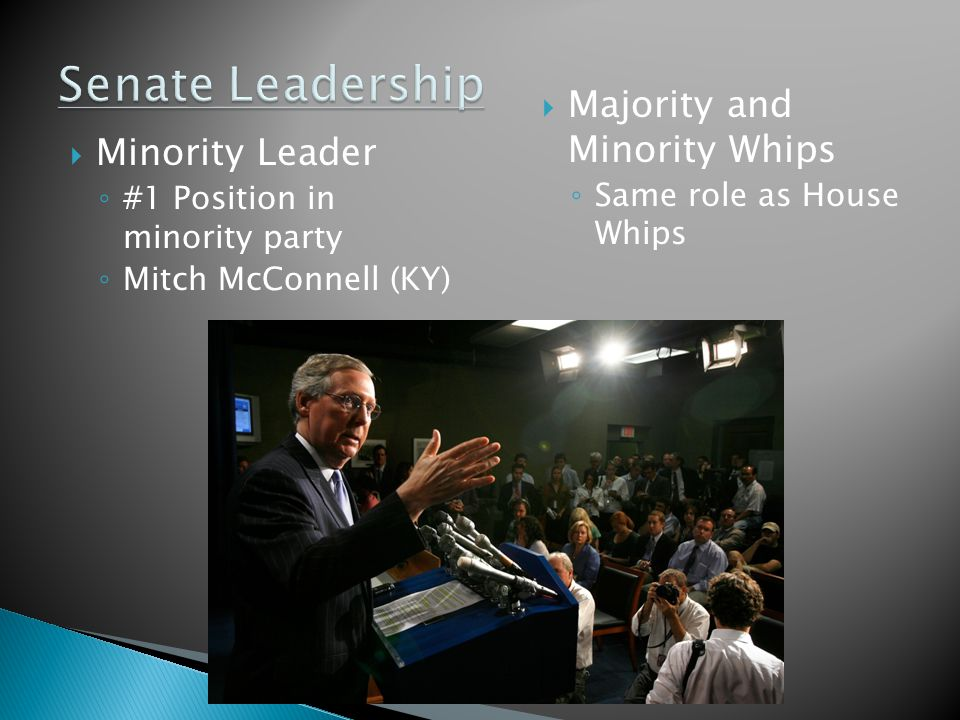  Minority Leader ◦ #1 Position in minority party ◦ Mitch McConnell (KY)  Majority and Minority Whips ◦ Same role as House Whips
