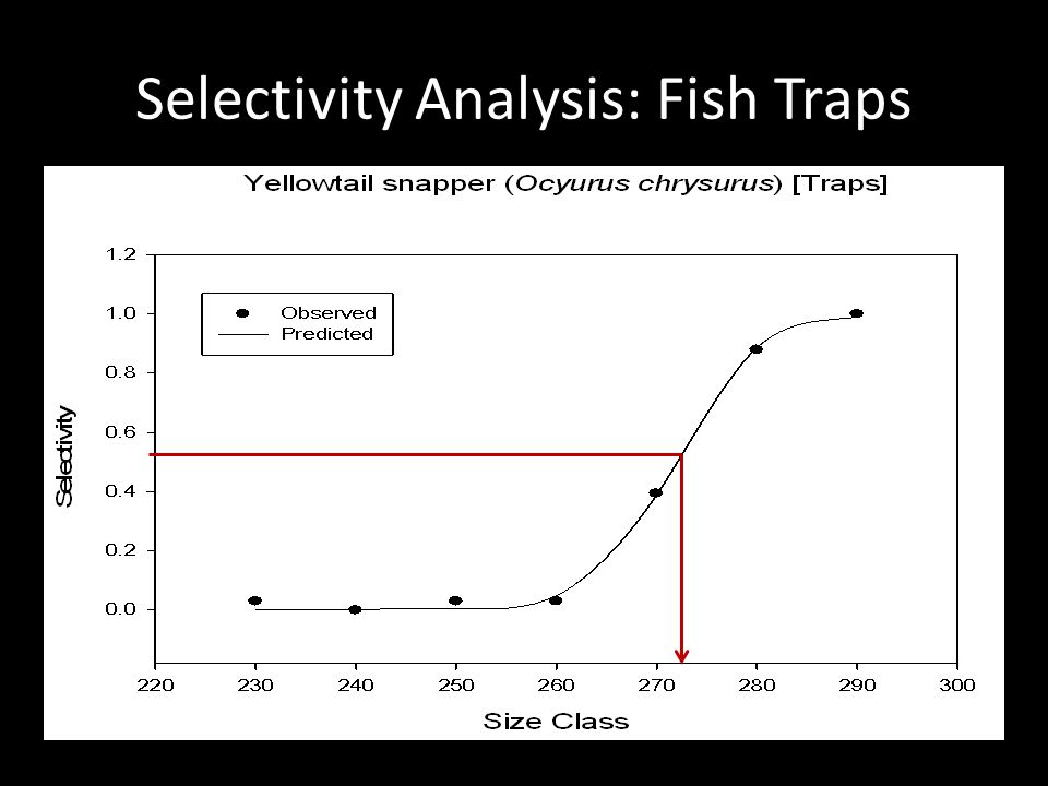 Selectivity Analysis: Fish Traps