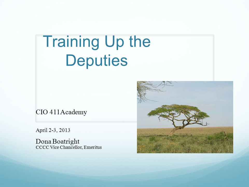 Training Up the Deputies CIO 411Academy April 2-3, 2013 Dona Boatright CCCC Vice Chancellor, Emeritus