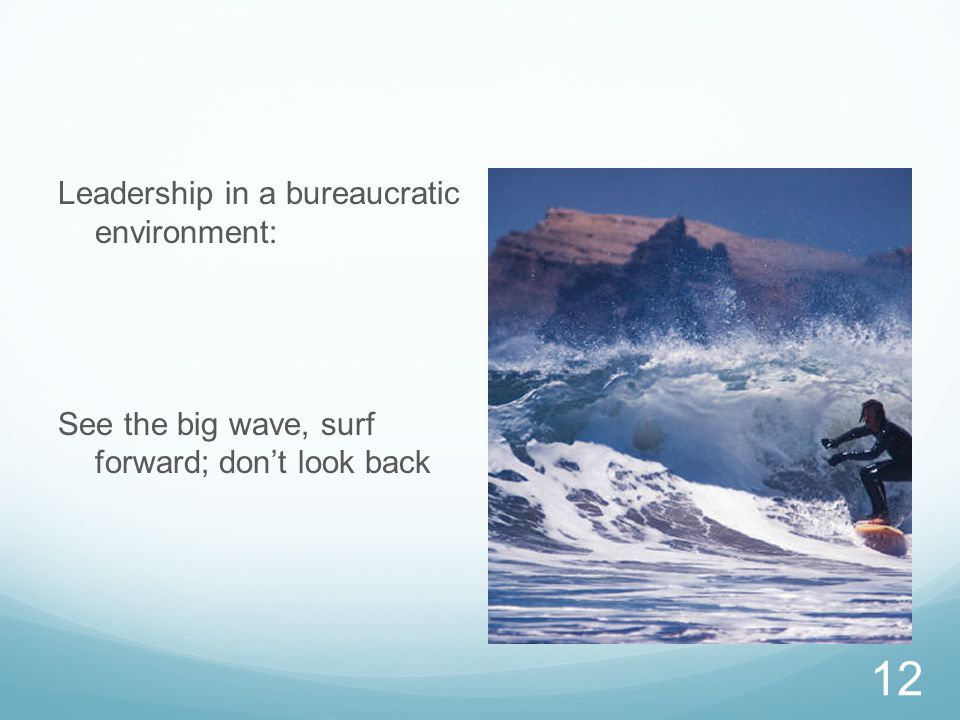 Leadership in a bureaucratic environment: See the big wave, surf forward; don't look back 12