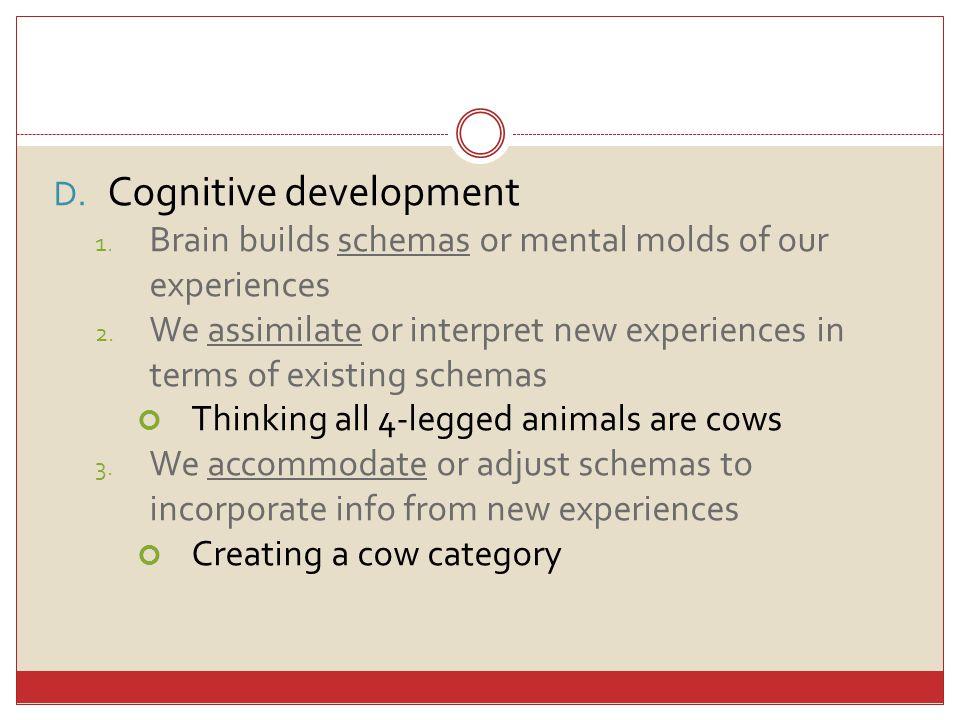 D. Cognitive development 1. Brain builds schemas or mental molds of our experiences 2.