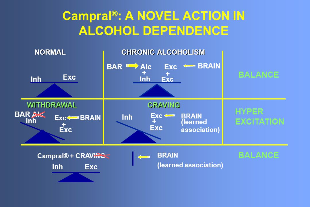 Campral ® : A NOVEL ACTION IN ALCOHOL DEPENDENCE NORMAL CHRONIC ALCOHOLISM BALANCE WITHDRAWALCRAVING HYPER EXCITATION BALANCE Inh Exc Inh Exc BARAlc + Exc BRAIN + BAR Alc Inh Exc BRAIN + Inh Exc BRAIN + (learned association) InhExc Campral® + CRAVING BRAIN (learned association)