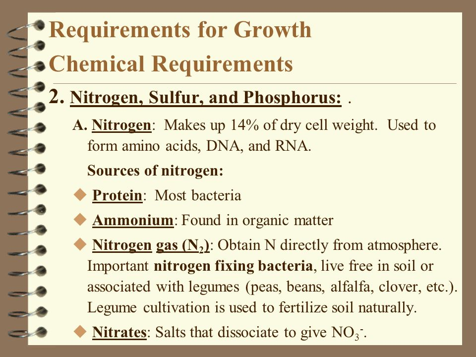Requirements for Growth Chemical Requirements 2. Nitrogen, Sulfur, and Phosphorus:. A. Nitrogen: Makes up 14% of dry cell weight. Used to form amino a