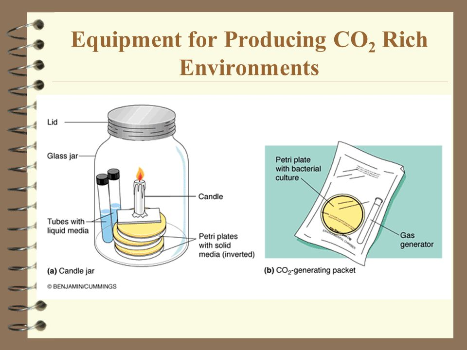 Equipment for Producing CO 2 Rich Environments