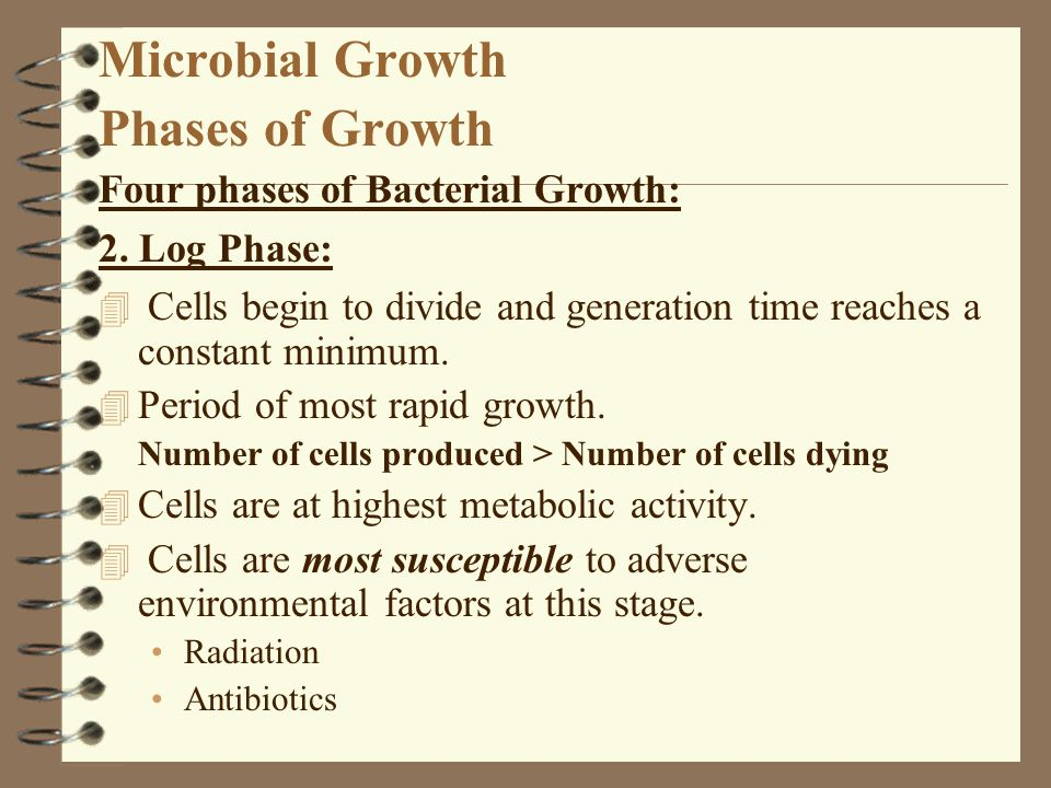 Microbial Growth Phases of Growth Four phases of Bacterial Growth: 2. Log Phase: 4 Cells begin to divide and generation time reaches a constant minimu