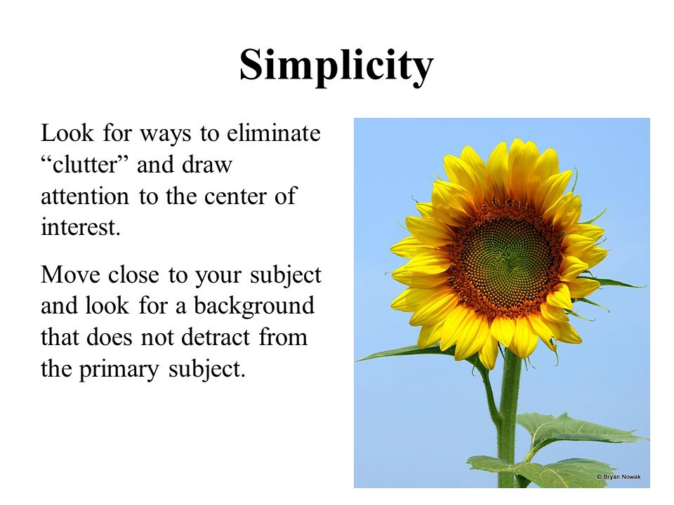 "Simplicity Look for ways to eliminate ""clutter"" and draw attention to the center of interest. Move close to your subject and look for a background tha"