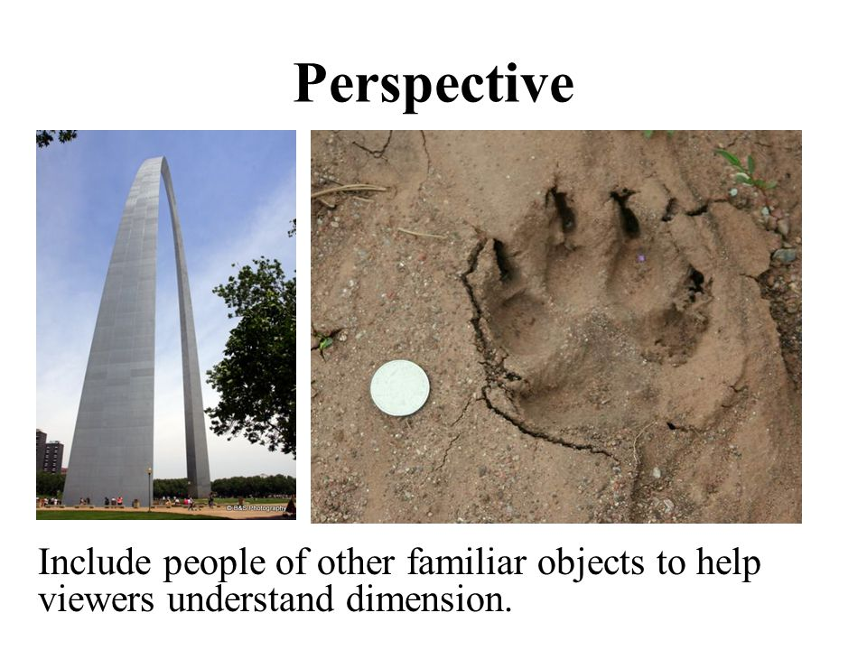 Perspective Include people of other familiar objects to help viewers understand dimension.