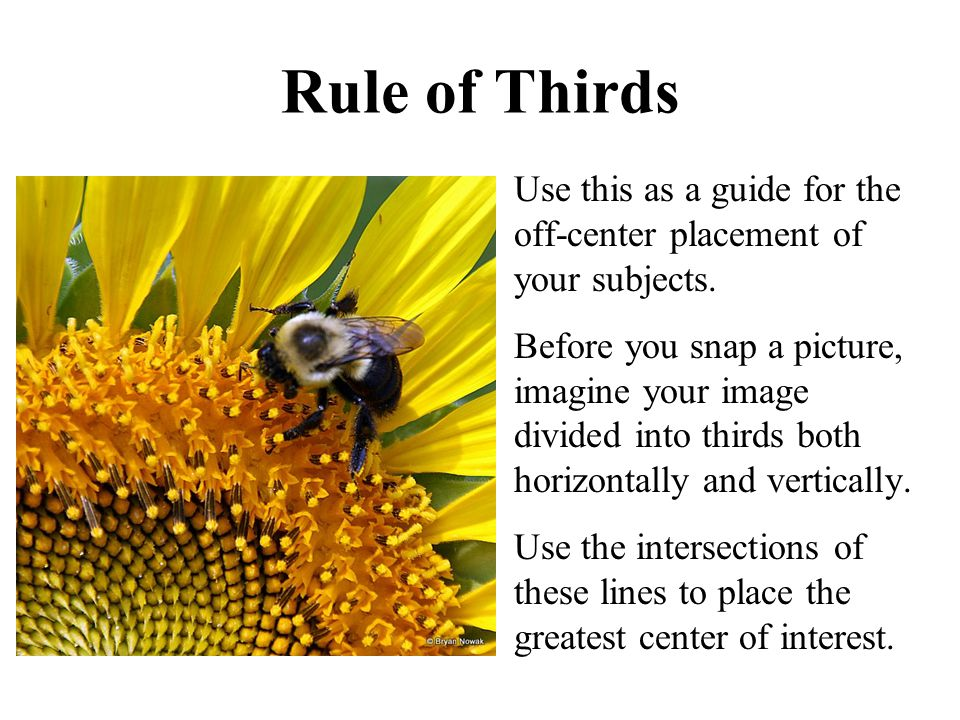Rule of Thirds Use this as a guide for the off-center placement of your subjects. Before you snap a picture, imagine your image divided into thirds bo