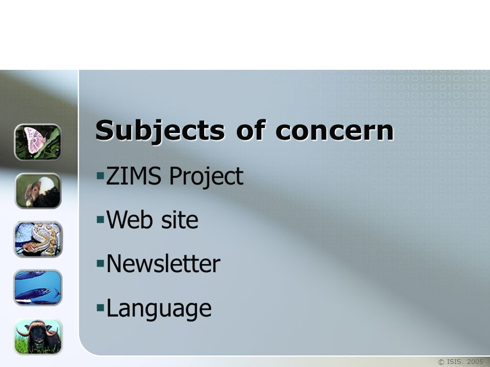 © ISIS. 2005 Subjects of concern  ZIMS Project  Web site  Newsletter  Language