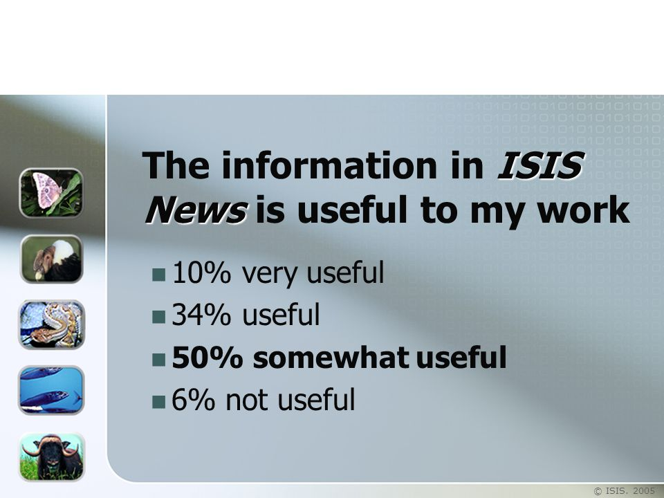 © ISIS. 2005 ISIS News The information in ISIS News is useful to my work 10% very useful 34% useful 50% somewhat useful 6% not useful