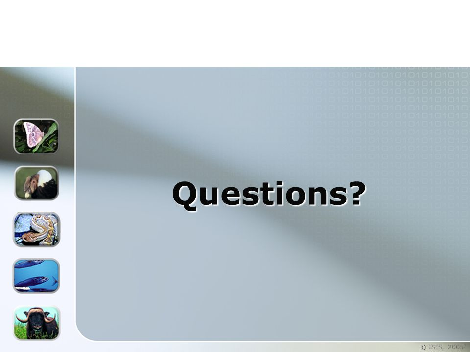 © ISIS. 2005 Questions