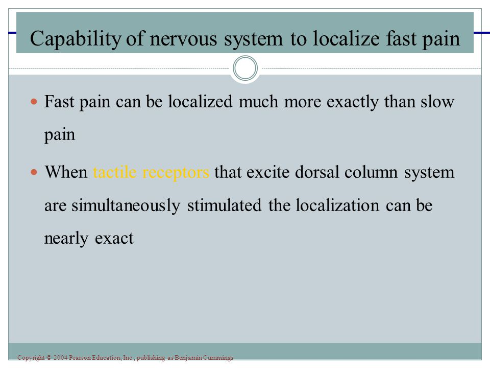 Copyright © 2004 Pearson Education, Inc., publishing as Benjamin Cummings Capability of nervous system to localize fast pain Fast pain can be localize
