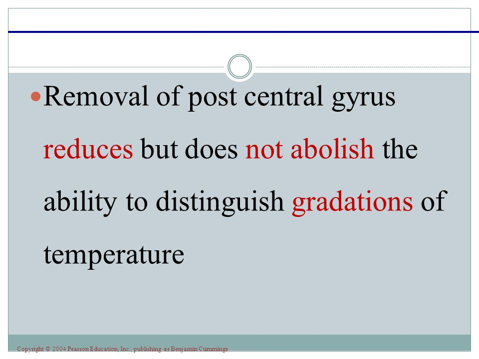Copyright © 2004 Pearson Education, Inc., publishing as Benjamin Cummings Removal of post central gyrus reduces but does not abolish the ability to di