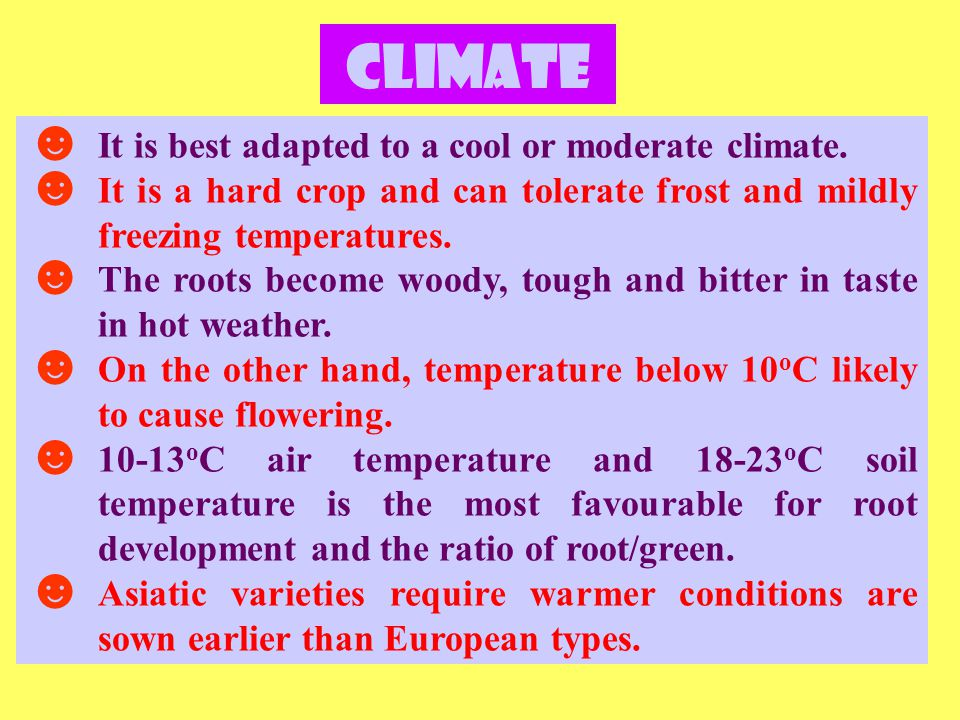 Climate ☻ It is best adapted to a cool or moderate climate.