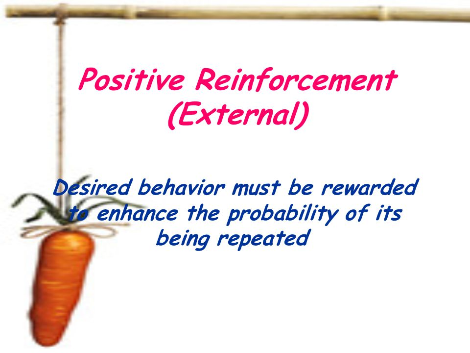 Positive Reinforcement (External) Desired behavior must be rewarded to enhance the probability of its being repeated