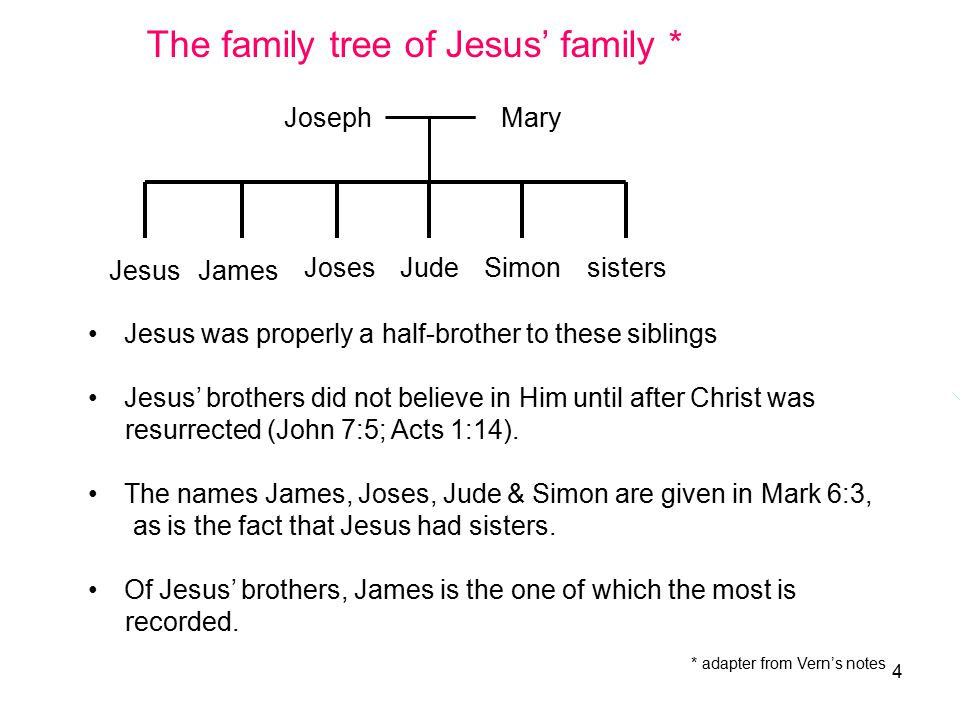 4 James Jude Jesus JosesSimonsisters MaryJoseph The family tree of Jesus' family * Jesus was properly a half-brother to these siblings Jesus' brothers did not believe in Him until after Christ was resurrected (John 7:5; Acts 1:14).
