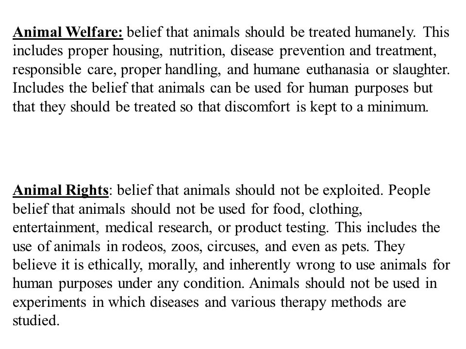 Animal Welfare: belief that animals should be treated humanely.