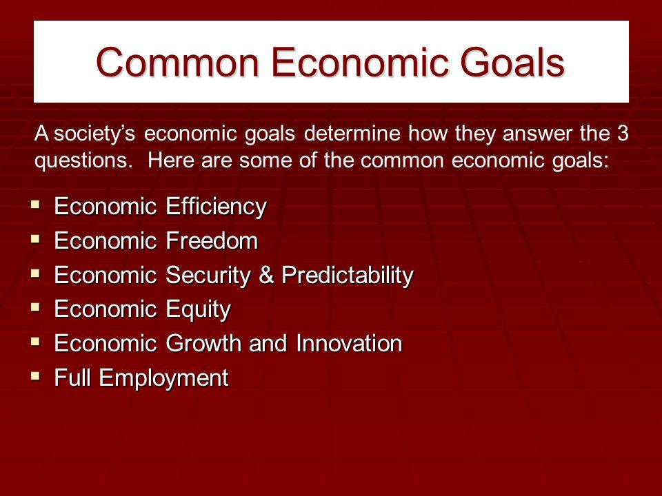 Common Economic Goals  Economic Efficiency  Economic Freedom  Economic Security & Predictability  Economic Equity  Economic Growth and Innovation