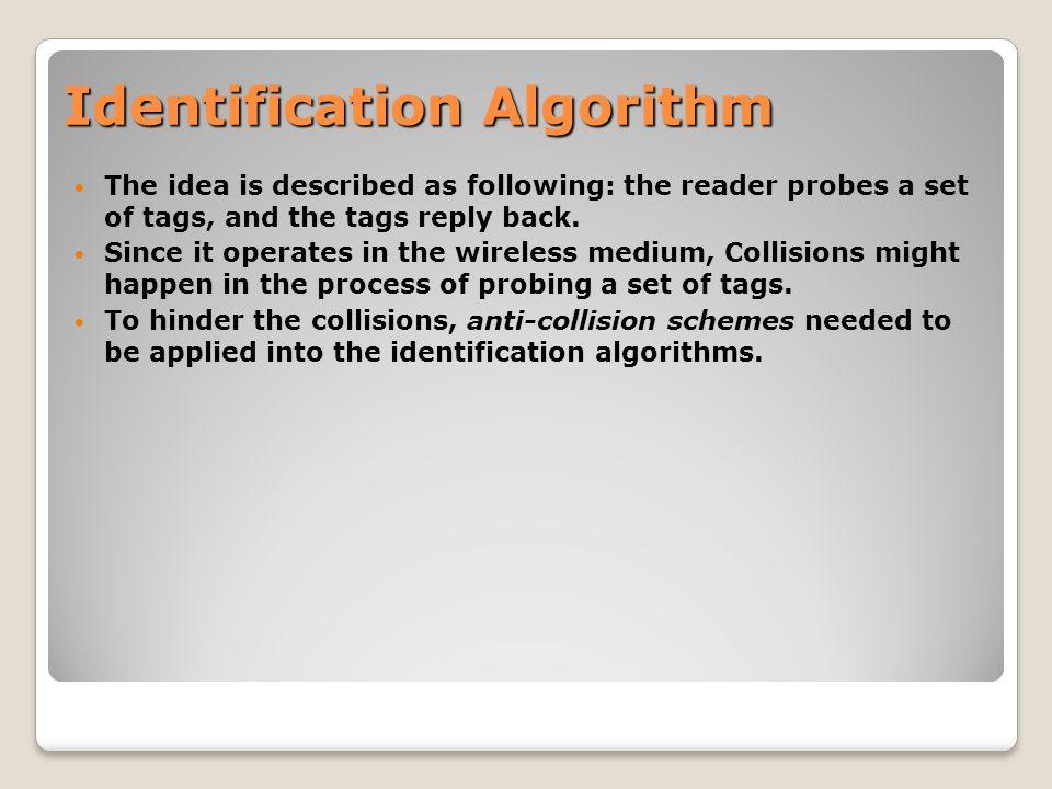 Identification Algorithm Probabilistic Deterministic