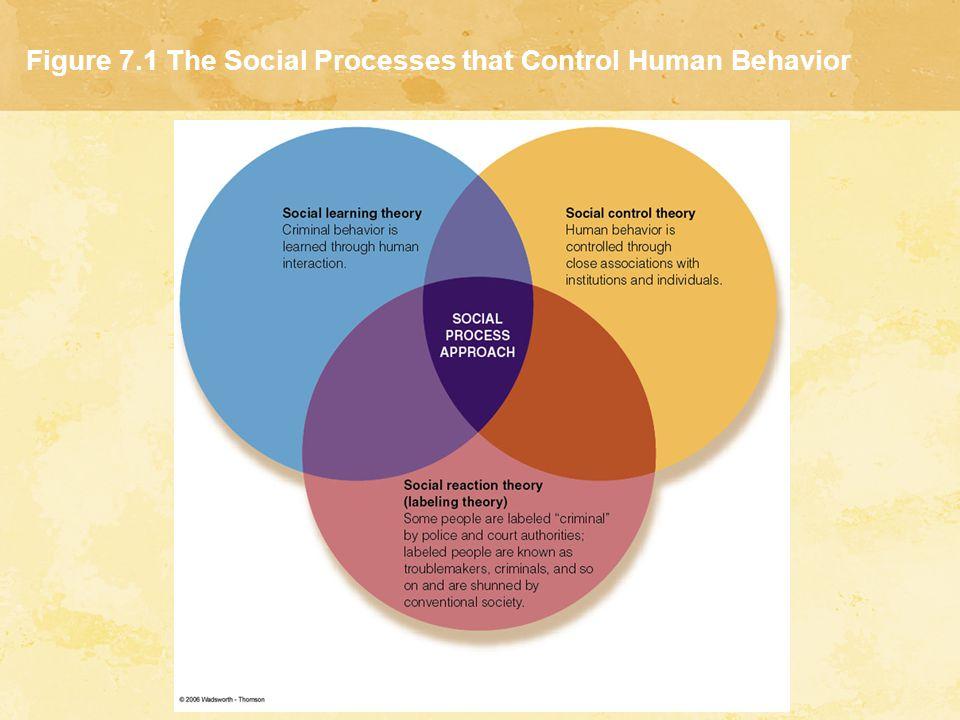 Figure 7.1 The Social Processes that Control Human Behavior