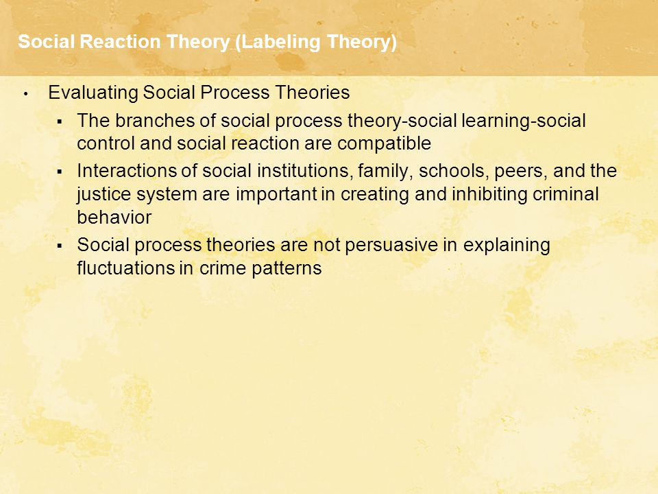 Social Reaction Theory (Labeling Theory) Evaluating Social Process Theories  The branches of social process theory-social learning-social control and