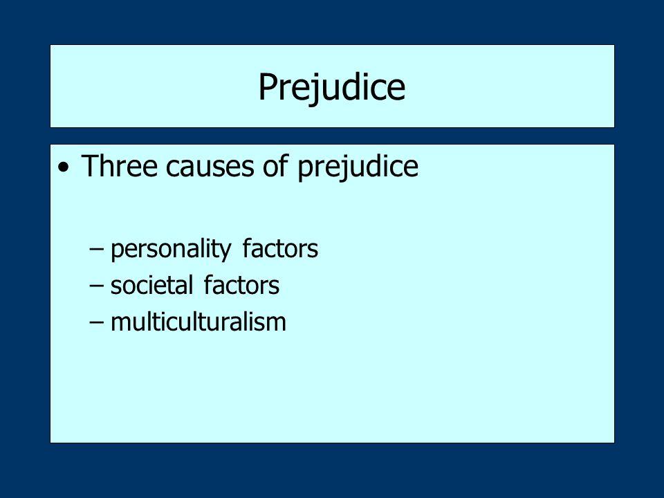 Prejudice Three causes of prejudice –personality factors –societal factors –multiculturalism
