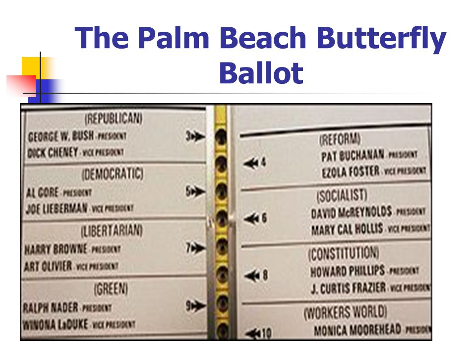 The Palm Beach Butterfly Ballot