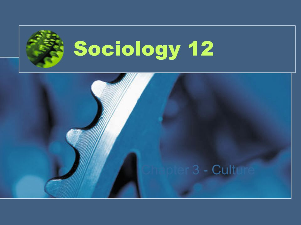 Sociology 12 Chapter 3 - Culture