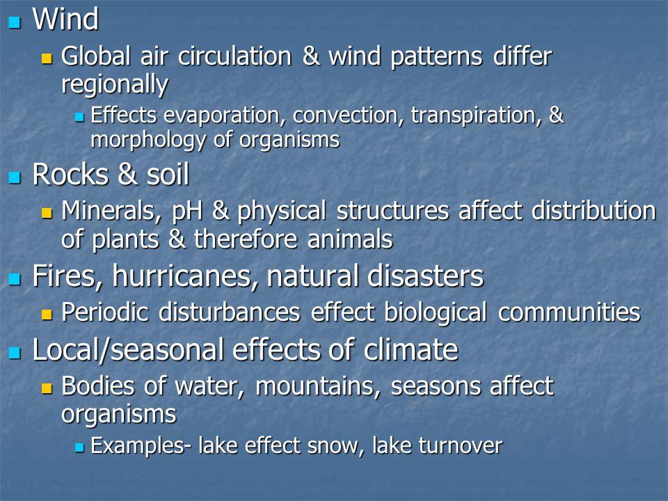 Wind Wind Global air circulation & wind patterns differ regionally Global air circulation & wind patterns differ regionally Effects evaporation, conve