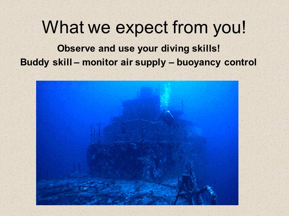 What we expect from you.Observe and use your diving skills.