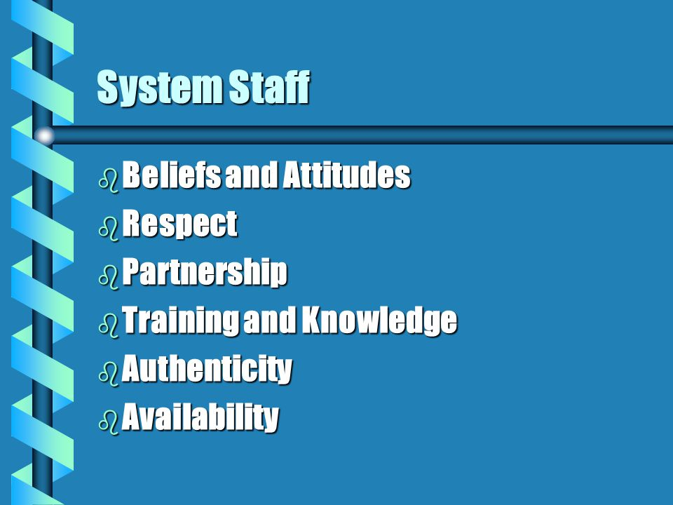 System Staff b Beliefs and Attitudes b Respect b Partnership b Training and Knowledge b Authenticity b Availability