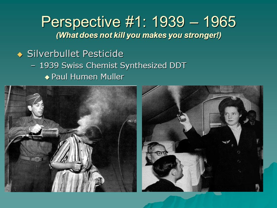 Perspective #1: 1939 – 1965 (What does not kill you makes you stronger!)  Silverbullet Pesticide –1939 Swiss Chemist Synthesized DDT  Paul Humen Muller