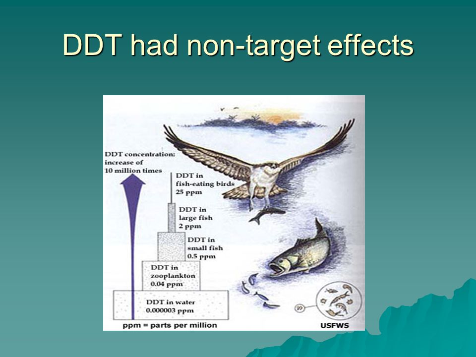 DDT had non-target effects