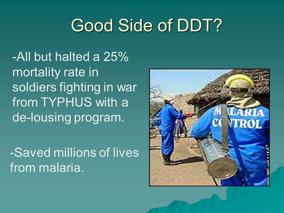 Good Side of DDT.