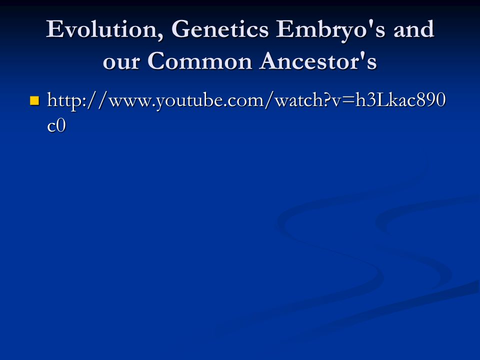 Evolution, Genetics Embryo's and our Common Ancestor's http://www.youtube.com/watch?v=h3Lkac890 c0 http://www.youtube.com/watch?v=h3Lkac890 c0