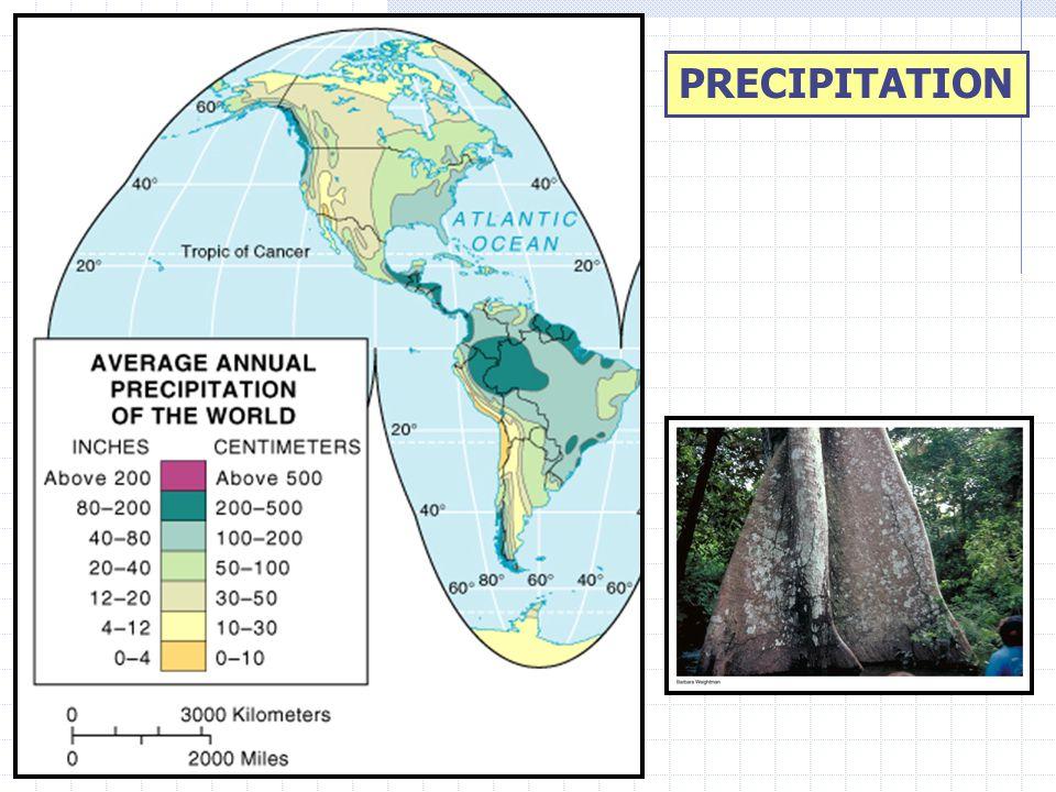 THE INCA EMPIRE CULTURE HEARTH-INTERMONTANE BASIN AROUND CUZCO (1200-1535 A.D.) ALTIPLANOS WERE KEY TO SETTLEMENT PATTERNS.
