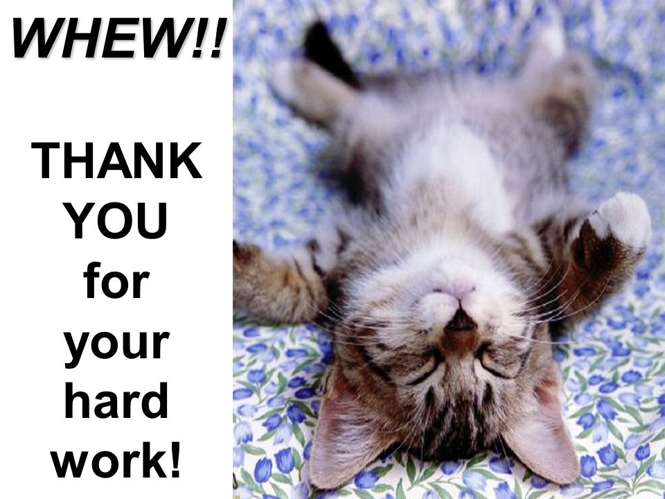 WHEW!! THANK YOU for your hard work!