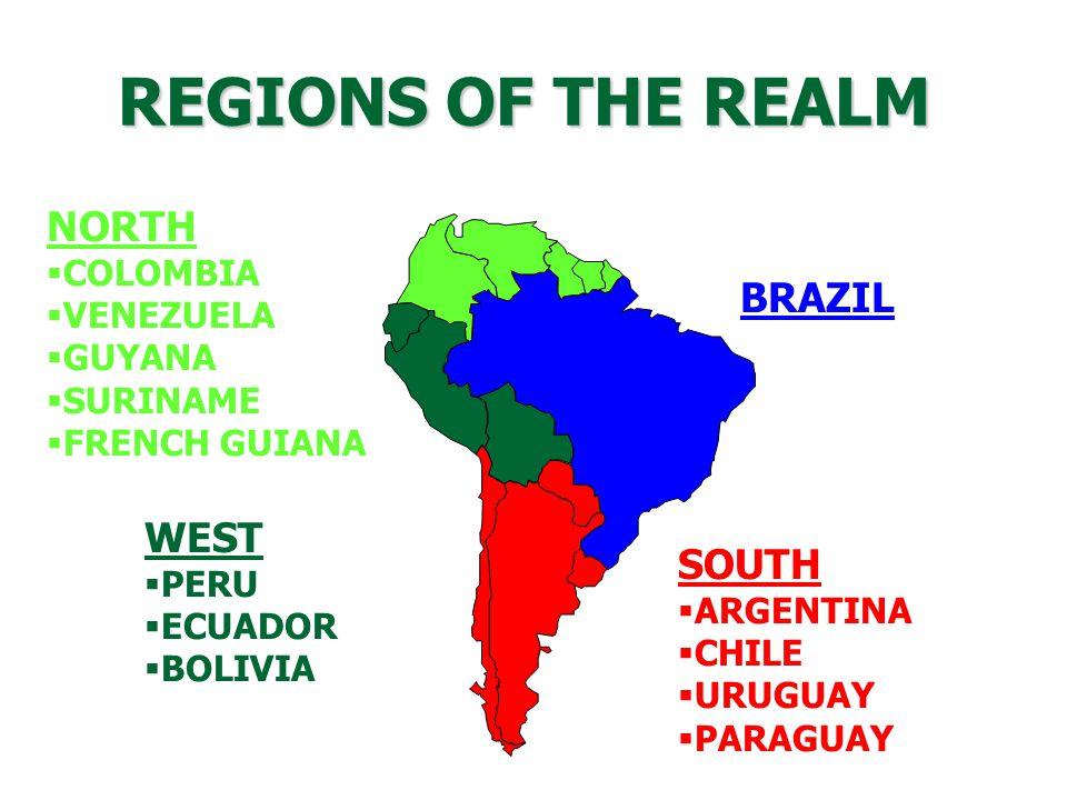 REGIONS OF THE REALM BRAZIL NORTH  COLOMBIA  VENEZUELA  GUYANA  SURINAME  FRENCH GUIANA SOUTH  ARGENTINA  CHILE  URUGUAY  PARAGUAY WEST  PERU  ECUADOR  BOLIVIA