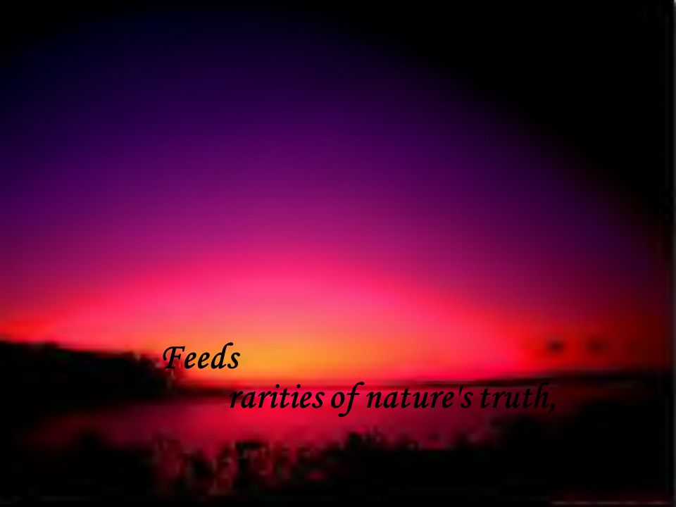 rarities of nature s truth, Feeds