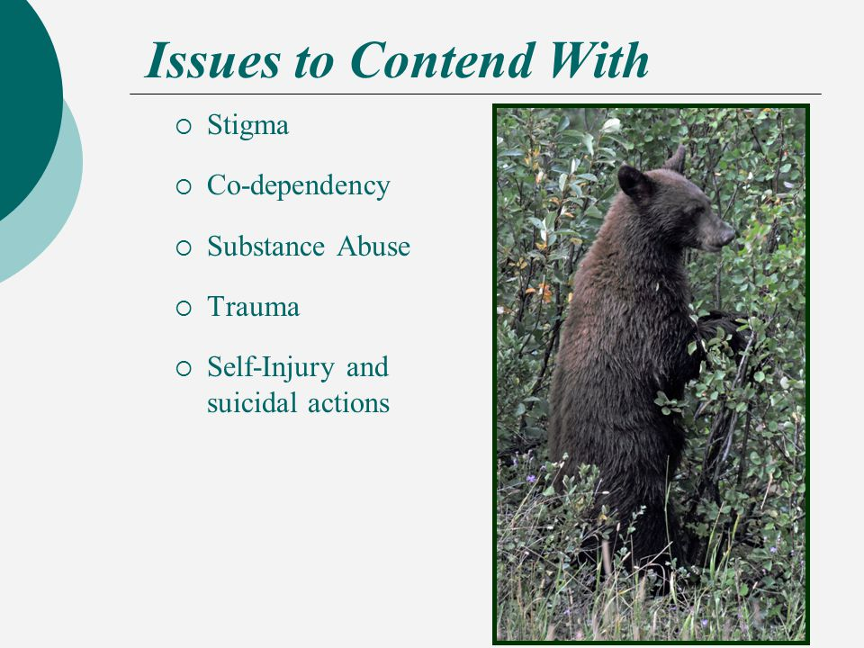 Issues to Contend With  Stigma  Co-dependency  Substance Abuse  Trauma  Self-Injury and suicidal actions