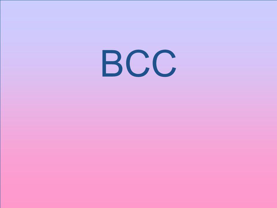 17 BCC