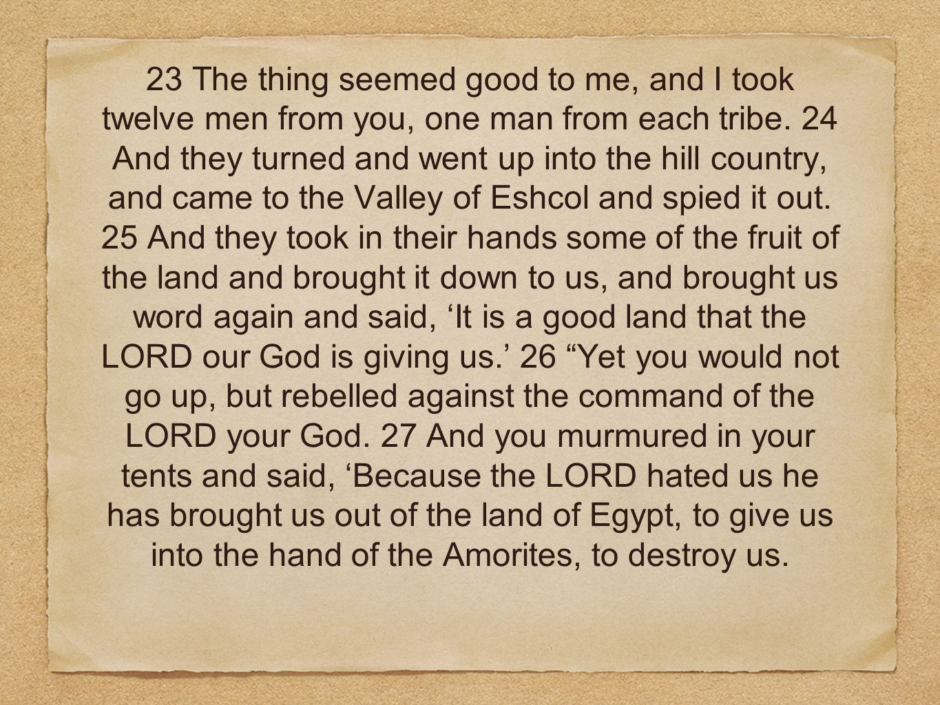 23 The thing seemed good to me, and I took twelve men from you, one man from each tribe.