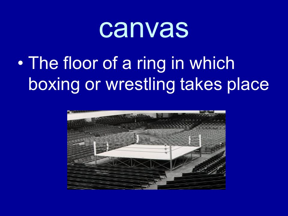 canvas The floor of a ring in which boxing or wrestling takes place